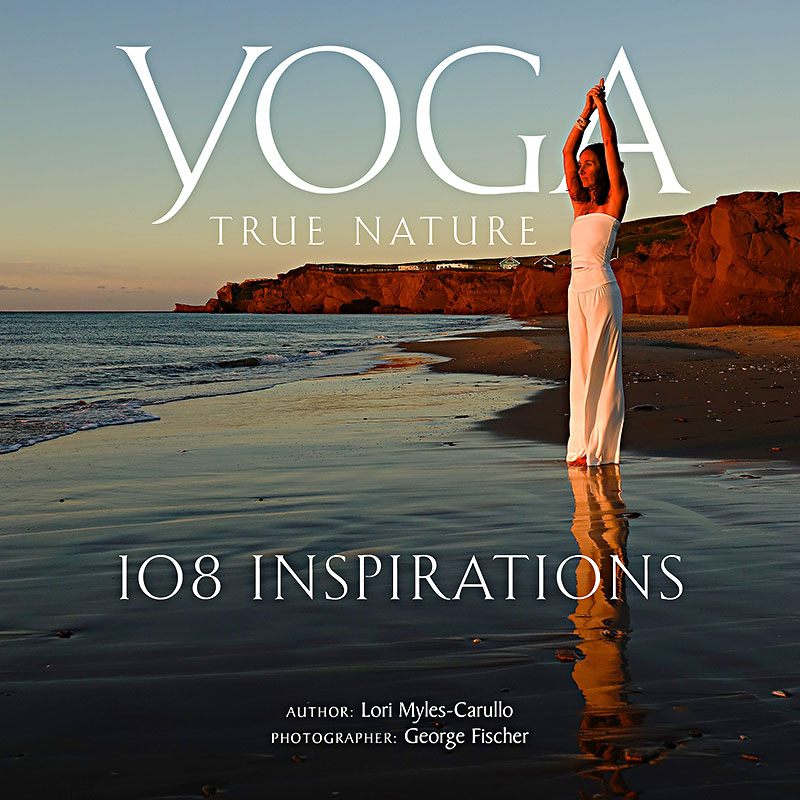 Fischer-Yoga-book-Cover