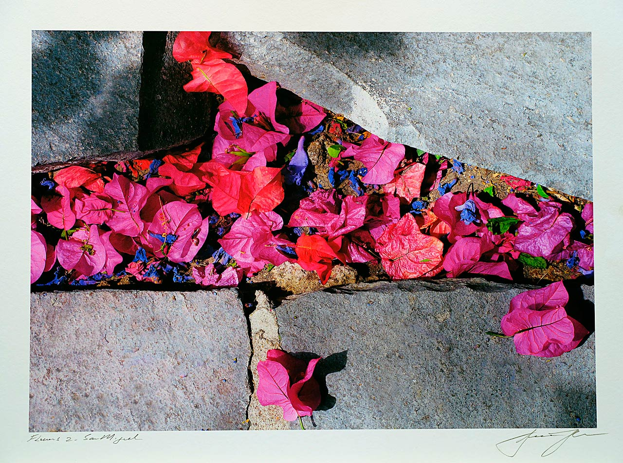 print-Mexico-San-Miguel-flowers